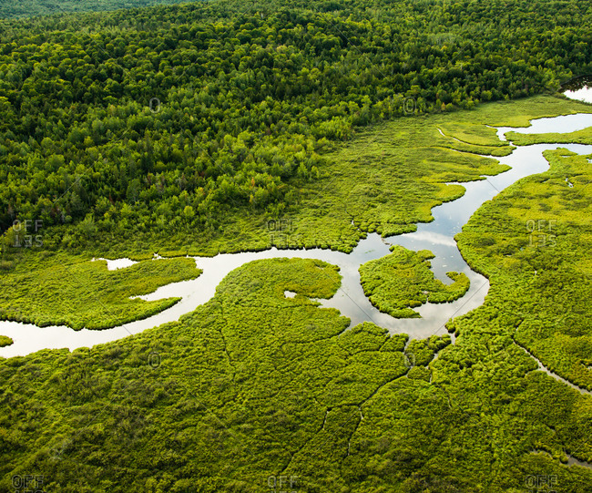 Aerial view of marshy landscape