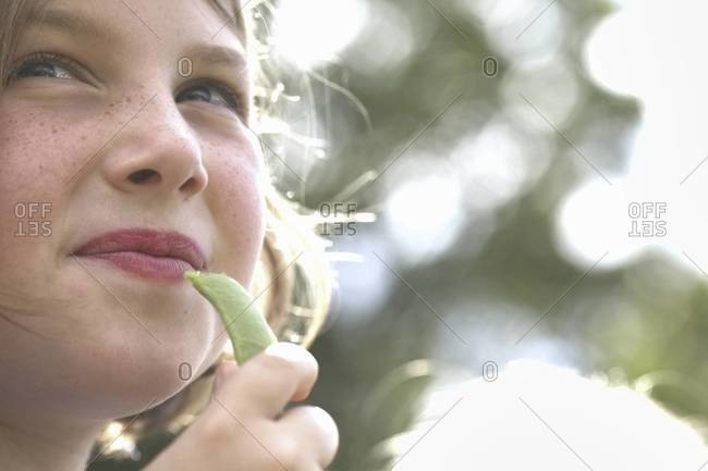 A child, a young girl eating a freshly picked snap pea in a garden.