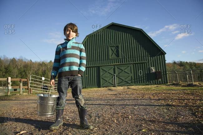 A young boy in a paddock