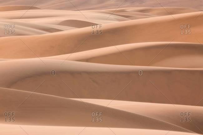 Rolling Namib desert landscape