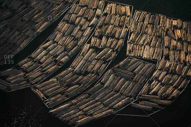 Logs awaiting export, Skagit County