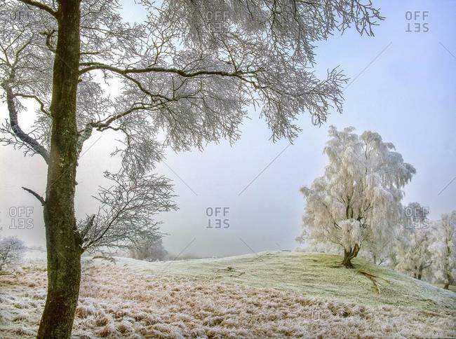 Winter scene of Glen Dochart, Highlands, Scotland