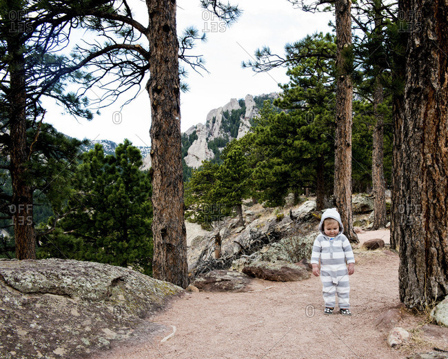 Kid standing in forest
