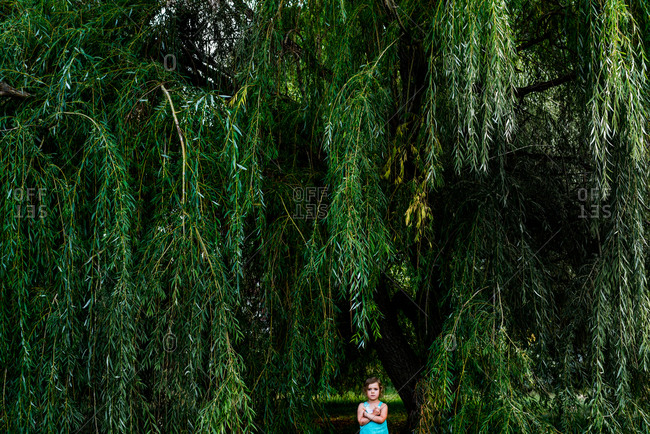 Girl standing under a willow