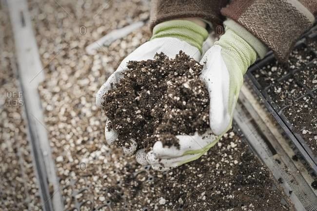 A person holding a handful of organic soil