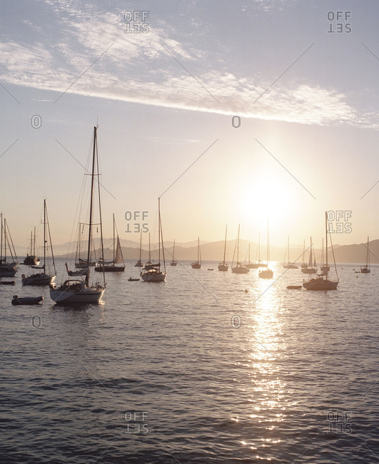 Sailboats on the water at sunset