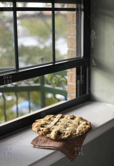 Rhubarb pie at the window