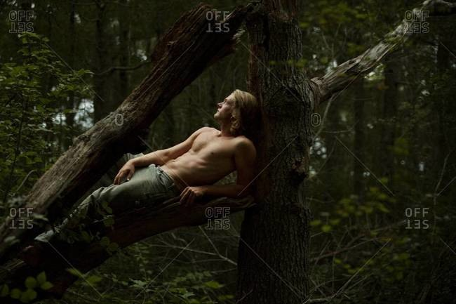 Young man lying on bough of tree