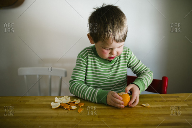 Young boy peeling a clementine with his hands