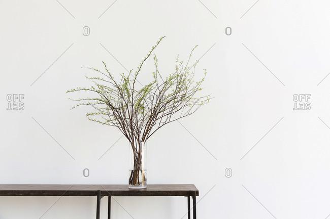 Still life of branch flower arrangement