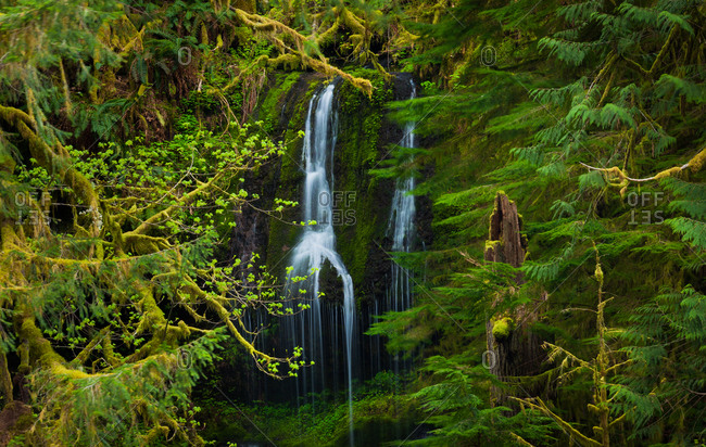 Water falling along mossy cliff