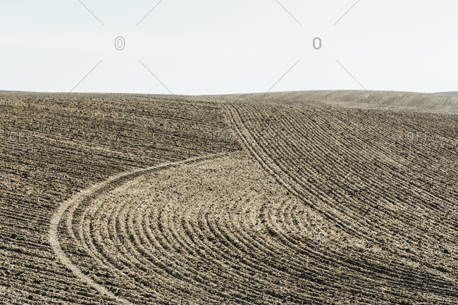 Ploughed cropland