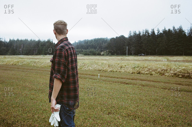 Young man looking at cranberry bog