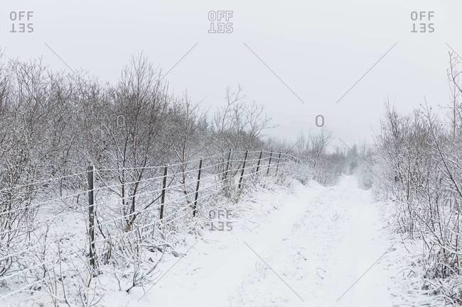 A fence in the country during winter