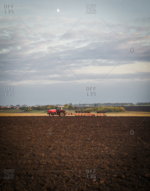 Tractor plowing the field