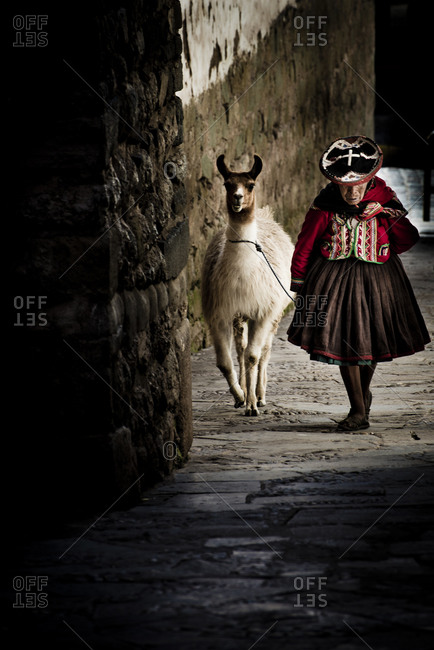 An old woman in traditional dress walking through a spanish style city with an alpaca.  Cusco, Peru.