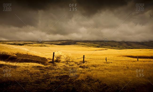 Overcast sky above empty field