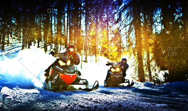 Snowmobile riders on race in forest