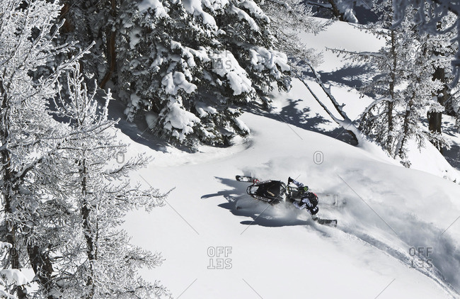 Man riding snowmobile in nature