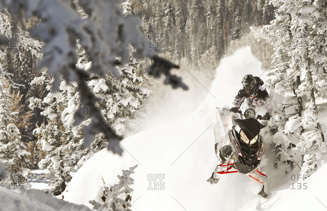 Man riding snowmobile in the forest