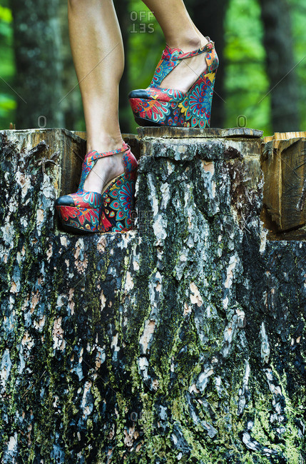 Legs of woman in colorful shoes on stub in forest