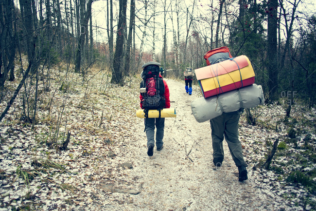 Backpackers walking in winter forest