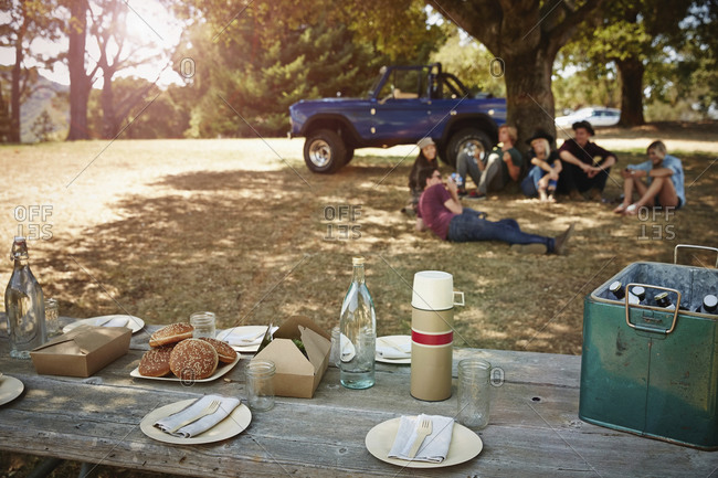 Picnic table laid out in park with friends in background