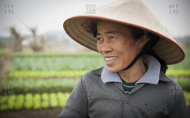 Vietnam - January 29,2012: Portrait of a Vietnamese rice field worker in a non la