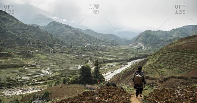 Terraced rice fields surrounded by mountains in Vietnam