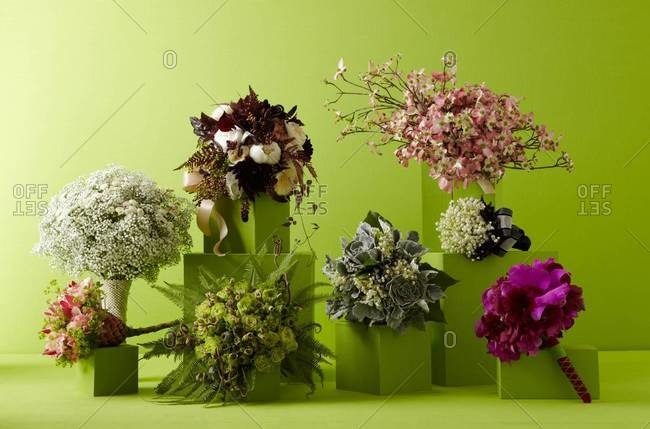 Floral compositions in green interior