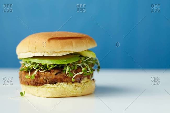 Fresh hamburger with sprouts