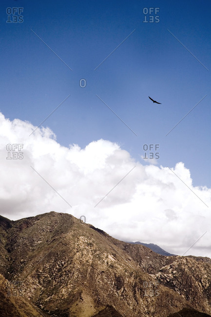 Mountain ranges and flying eagle