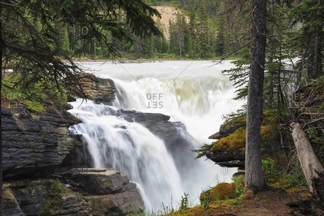 Canada, Alberta, Jasper National Park, Athabasca River, Athabasca Falls