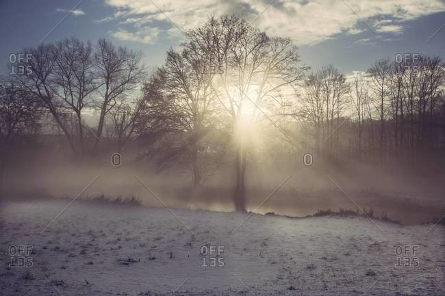 Germany, Bavaria, Landshut, winter landscape with morning sun