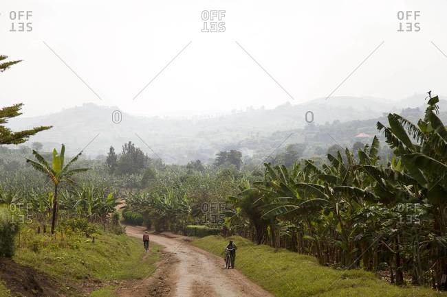 Locals riding bicycles on a dirt road in Uganda
