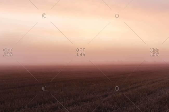 Dawn above field, Norrkoping, Ostergotland, Sweden