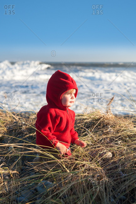 Toddler girl in dune grass  on beach