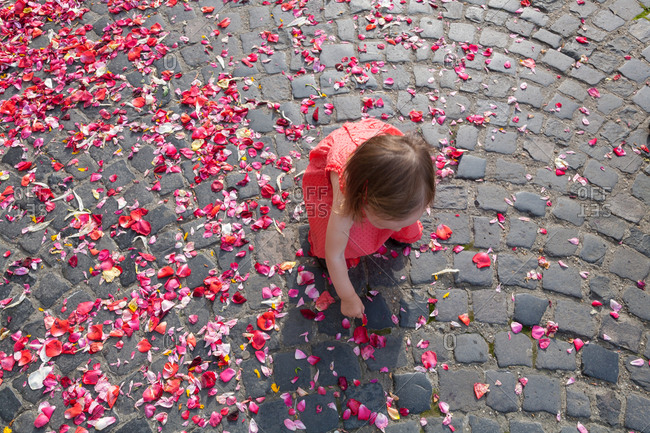Toddler girl picking up flowers after wedding