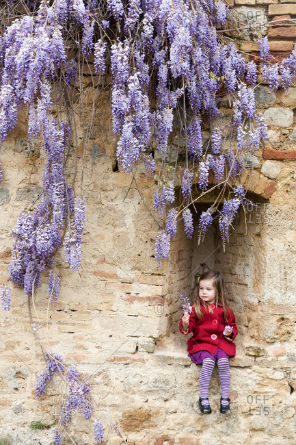 Young girl with wisteria flowers in San Gimignano, Italy