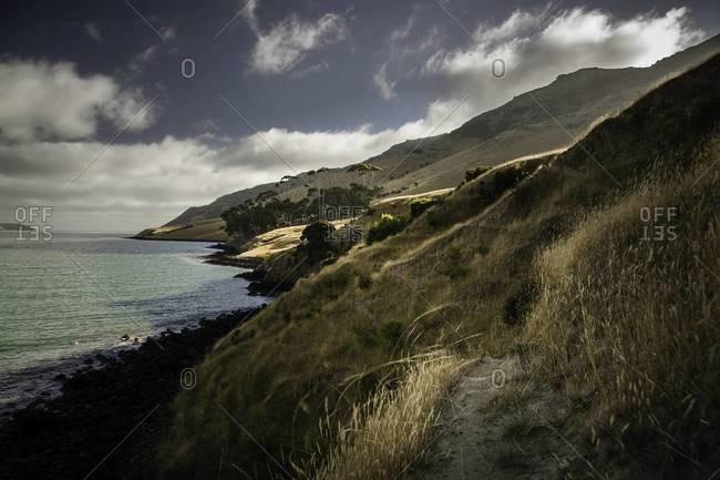 Coastline along the Pigeon Bay trail on the Banks Peninsula, New Zealand