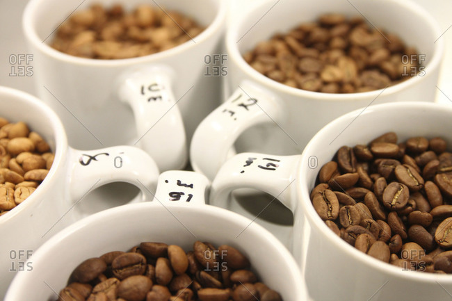 Roasted coffee beans arranged in cups
