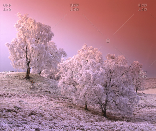 Winter landscape near Newtonmore, Scottish Highlands