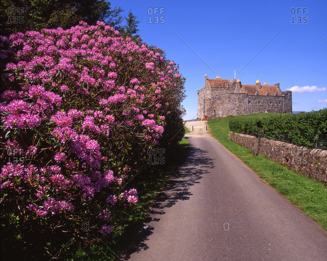 Duart Castle at spring on the Isle of Mull, Scotland
