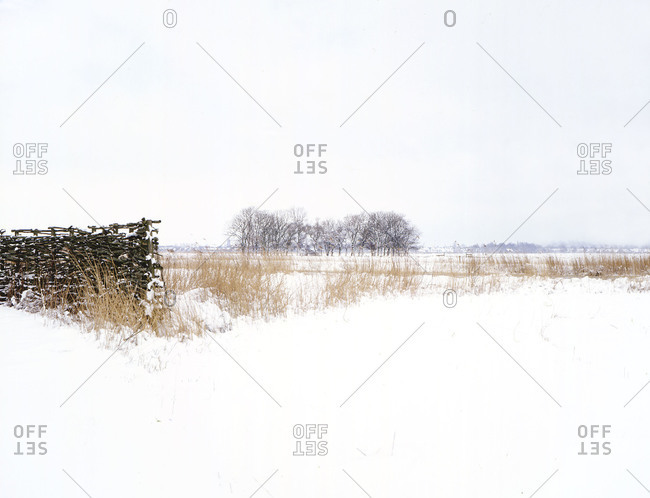Winter landscape at countryside