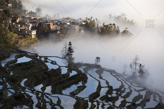 Overcast rice terraces and village