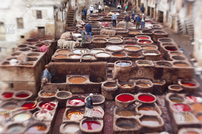 The tannery in Fez, Morocco