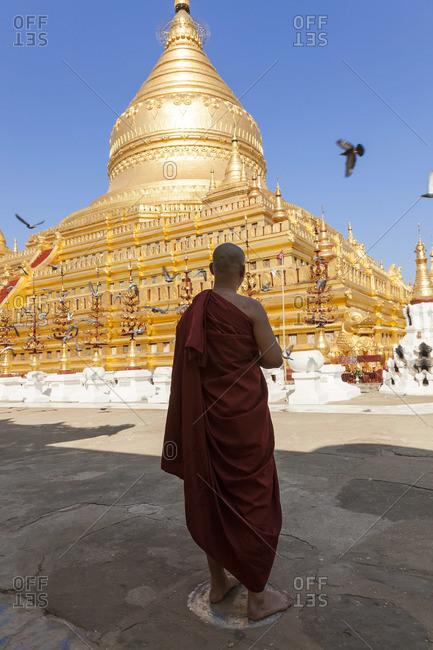 Monk standing in special prayer spot, Shwezigon Pagoda, Bagan (Pagan), Myanmar, (Burma)