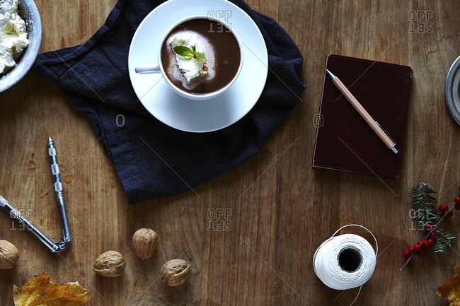 Hot Chocolate topped with fresh whipped cream garnished with mint