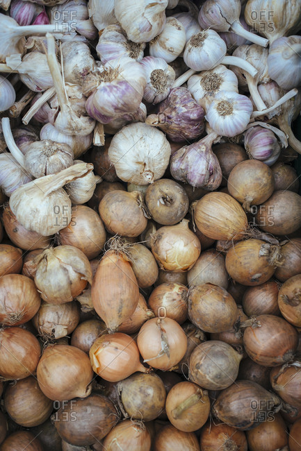 Garlic (Allium sativum) and onions (Allium cepa) at a vegatable market
