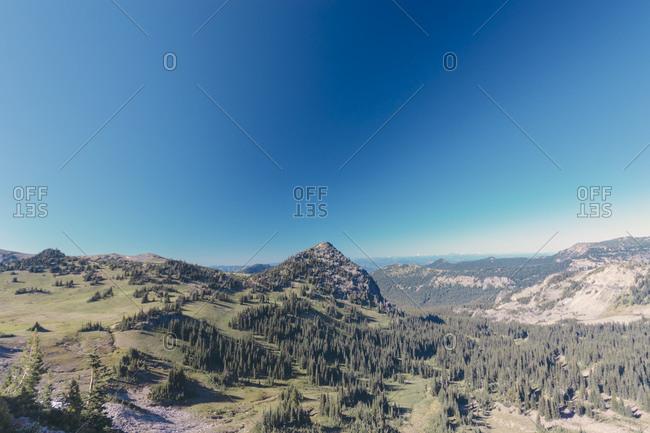 View over Mt Rainier National Park